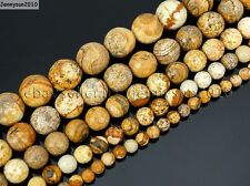 Natural Picture Jasper Gemstone Faceted Round Beads 16'' 4mm 6mm 8mm 10mm 12mm