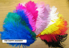 "Ostrich Feathers Pack of 5 (Approx 8""-11"" Long) Beautiful colours FREE POSTAGE"