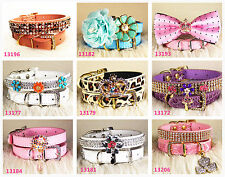 Colorful Cute Bling bling dog collar cat collar choose size XS S M