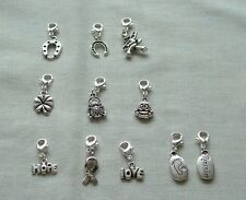 Clip on charms, choose from list, lucky wedding, hope ribbon, love, bereavement
