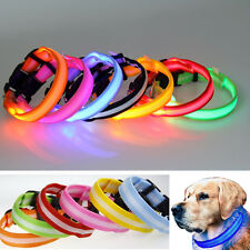 Light Up LED Dogs Collar Pet Flashing Safety Night Cat Glow in the Dark 8 Colors