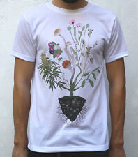 Nature's Healers T shirt Artwork, Ergot , Liberty caps, Fly Agaric, Opium Poppy