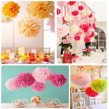 10x Wedding Party's Xmas Outdoor home Tissue Paper Pom Poms Flower Balls Decor d