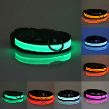 Dog Puppy Safety LED Collar Pet Rope Belt Flashing Light Up Harness Glow In Dark