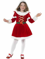 Child Little Miss Santa Fancy Dress Costume
