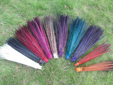 Wholesale!  beautiful pheasant tail feathers 18-20 inches/45-50 cm feathers