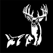 Whitetail Buck Skull Antlers - Arrow Whitetail Deer Hunting window decal sticker