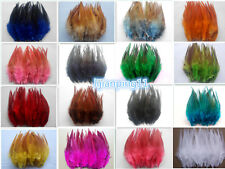 Wholesale 50/100pcs beautiful rooster tail feathers 12-15cm / 5-6inches Hot!