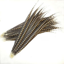 Wholesale 10/20/50pcs natural Lady Amherst Pheasant feathers 6-44inch/15-110cm