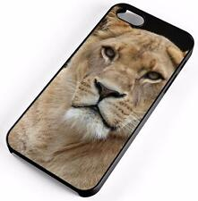 African Lion Panthera Leo Case Fits Apple iPhones Any Carrier