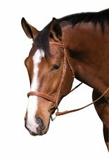 NEW Henri de Rivel Fancy Raised Padded Bridle W/ Laced Reins Pro @ Queenside ...