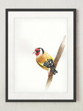 ORIGINAL Goldfinch WATERCOLOUR painting, LIMITED Edition Wildlife Print