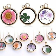 Chic Wishing Glass Locket Pendant Real Dried Flower Long Chain Necklace Jewelry