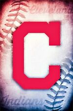 Cleveland Indians MLB Baseball Sports Team Logo Print Picture