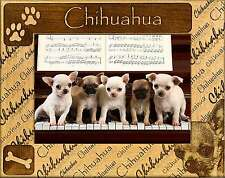 CHIHUAHUA: ENGRAVED ALDERWOOD PICTURE FRAME #0058 Available in four sizes