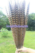 Brand new 10-100pcs 30-80 cm/12-32 inches Natural pheasant tail feather decorate