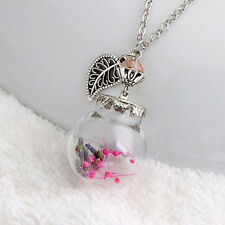 Flower Bottle Necklace Glass Dried Flowers Leaf Pendants Crystal Fashion Jewelly