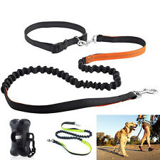 Adjustable Traction Collar Pet Dog Leash Nylon Rope Training Slip Lead Strap New