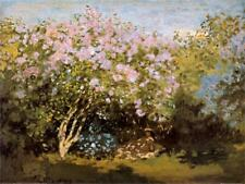 Blossoming Lilac in the Sun, c.1873 Art Print by Monet, Claude Wall Decor Home