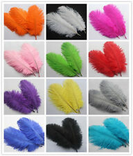Free shipping!10-200pcs High Quality Natural OSTRICH FEATHERS 6-8 inch/15-20 cm