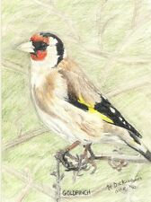 "Art Print or Canvas - ""Goldfinch"""
