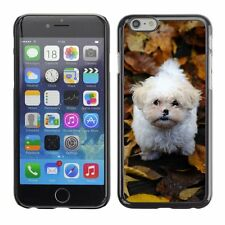 Hard Phone Case Cover Skin For Apple iPhone Lap dog fallen leaves