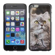 Hard Phone Case Cover Skin For Apple iPhone Street naughty cat