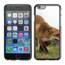 Hard Phone Case Cover Skin For Apple iPhone Old fox caught in surpri