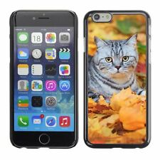 Hard Phone Case Cover Skin For Apple iPhone Cat on fallen leaves