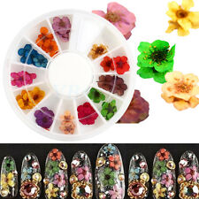 12 Color 3D Nail Art Sticker Real Dried Flower DIY Tips UV Acrylic Decoration MF