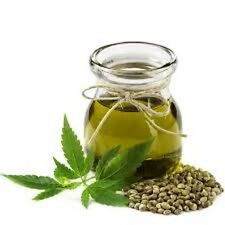 HEMP SEED OIL UNREFINED ORGANIC CARRIER VIRGIN COLD PRESSED FREE SHIPPING