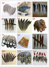 Wholesale 100PCS beautiful pheasant tail peacock feathers 4-20cm/2-8inches