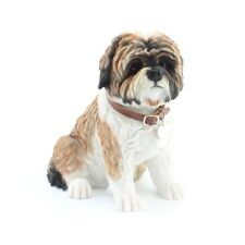 Large Brown Shih Tzu Dog Sitting with Leather Collar & Tag - New & Boxed