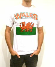 Wales T- Shirt / All Sizes / Wales Flag