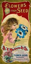 Haines Vintage Seed Cover Picture Art Print Poster A4 A3 A2 A1