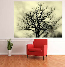 "SELF ADHESIVE WALL MURAL PHOTO PRINT ""Landscape of Trees"" PEEL & STICK nature"