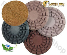 Eco Friendly Stone Polishing Pad Cheetah 5 Inch kIT Made in the USA