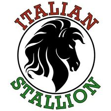 Italian Stallion T Shirt You Choose Style, Size, Color Up to 4XL 10346