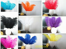 Wholesale Featured high quality Nature ostrich feathers Beautiful Wedding DIY