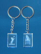 LOVELY 3D LASER CUT GLASS KEYRINGS - NEW AND BOXED - CHOICE OF DESIGNS