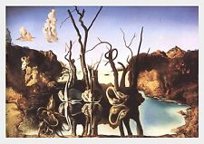 SALVADOR DALI SWANS REFLECTING ELEPHANTS WATCH Poster Print Art