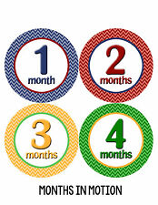 Baby Girl/Boy Gender Neutral Monthly Baby Stickers Month Milestone Sticker 011