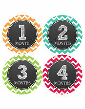 Baby Girl/Boy Gender Neutral Monthly Baby Stickers Month Milestone Sticker 068
