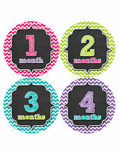 Baby Girl Monthly Baby Stickers Month Milestone Sticker Photo Chalkboard 331