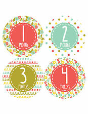 Baby Girl Monthly Baby Stickers 12 Month Milestone Birthday Sticker Photo #366
