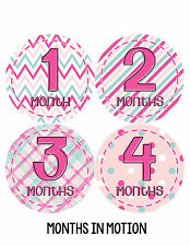 Baby Girl Monthly Photo Shirt Stickers 12 Month Milestone Sticker Newborn #276
