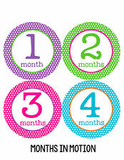 Baby Girl Monthly Photo Shirt Stickers 12 Month Milestone Sticker Newborn #200