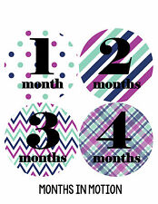 Baby Girl Monthly Baby Stickers 12 Month Milestone Birthday Sticker Photo #092