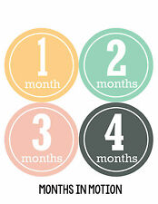 Baby Girl Monthly Photo Shirt Stickers 12 Month Milestone Sticker Newborn #170