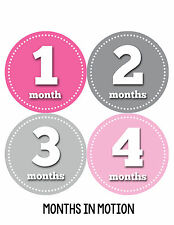Baby Girl Monthly Photo Shirt Stickers 12 Month Milestone Sticker Newborn #063